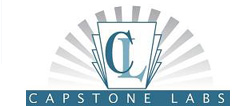 Capstone Labs are specialists in website design, web development, programming and IT consulting